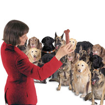 Picture: Veronica conducting the Glee Club with a dog bone.